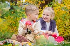 Två lyckliga ungar i en höst parkerar på en picknick royaltyfri fotografi