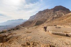 Två män nära arkeologisk plats i öken royaltyfri foto