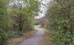 Två män som promenerar en landsbana i skogen Royaltyfria Bilder