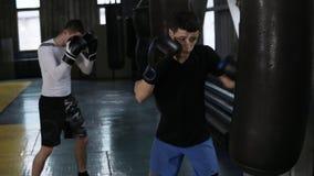 Två manliga boxare i tillfällig kläder slår det svarta boxas päronet Strävsam utbildande process på boxningidrottshallen sida lager videofilmer