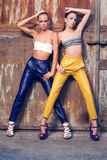 Två modeflickor mot rostiga dörrar Arkivfoto