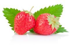 Två mogna röda jordgubbar och ett blad som isoleras på vit Arkivbild