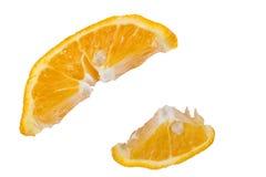 Två mogna skivor av orange Arkivbilder