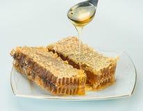 Två mogna stycken av honungskakan royaltyfria foton