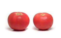 Två mogna tomater Arkivbilder