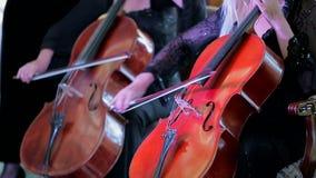Två musiker som spelar violoncellen på konserten lager videofilmer