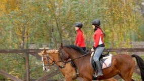 Två nätta flickaridninghästar på lantgården fotografering för bildbyråer