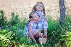 Två nätta gamla plockningjordgubbar för systrar 3 och 7 år på lantgården Arkivbilder