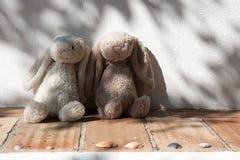 Två nallebjörnar som är förälskade arkivbild
