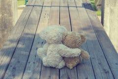 Två nallebjörnar som kramar picknicken fotografering för bildbyråer