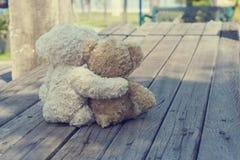 Två nallebjörnar som kramar picknicken royaltyfri foto