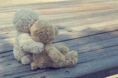 Två nallebjörnar som kramar picknicken arkivbild