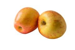 Två nya äpplen som isoleras på en vit bakgrund Arkivbild