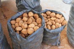 Två påsar av potatisar Royaltyfria Foton