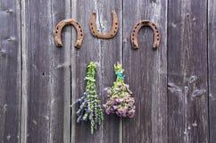 Två packar av oregano- och hyssopörter och tre hästskor på väggen royaltyfria foton