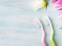 Två pastellfärgade tandborstar med blommaörter bakgrund colors vit yellow för den nya gröna tvätterifjädern Royaltyfri Bild