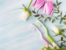 Två pastellfärgade tandborstar med blommaörter bakgrund colors vit yellow för den nya gröna tvätterifjädern Royaltyfri Foto