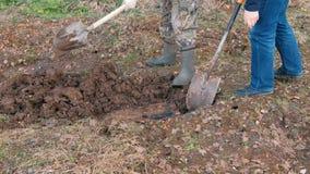 Två personer i gummistöveler gräver jordningen med skyfflar Räcker närbild Vårarbete i trädgården stock video