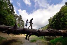 Två personer som går på den stupade trädstammen på jämvikten royaltyfria foton