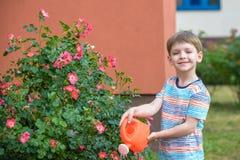 Två pojkar för liten unge som bevattnar rosor med canen i trädgård Familj trädgård som arbeta i trädgården, livsstil Royaltyfri Fotografi