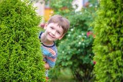 Två pojkar för liten unge som bevattnar rosor med canen i trädgård Familj trädgård som arbeta i trädgården, livsstil Fotografering för Bildbyråer