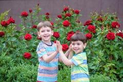 Två pojkar för liten unge som bevattnar rosor med canen i trädgård Familj trädgård som arbeta i trädgården, livsstil Royaltyfri Foto