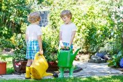 Två pojkar för liten unge som bevattnar växter i växthus i sommar Arkivbild