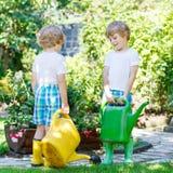 Två pojkar för liten unge som bevattnar växter i växthus i sommar Arkivfoto