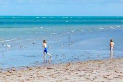 Två pojkar för små ungar som har gyckel på den tropiska stranden, lyckliga bästa vän som spelar med sand, kamratskapbegrepp sysko royaltyfria bilder
