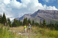 Två pojkar går i fjällängar royaltyfria foton