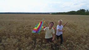 Två pojkar kör längs ett vetefält med en drake Teamwork Utomhus- lekar, barndomdrömmar stock video