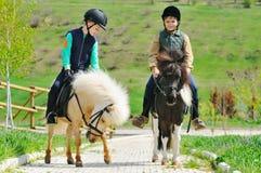 Två pojkar med ponnyer Arkivfoto