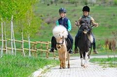 Två pojkar med ponnyer Fotografering för Bildbyråer