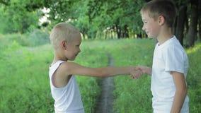 Två pojkar som skakar händer i parkera stock video
