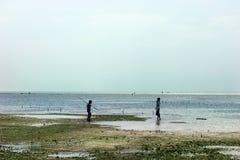Två pojkar som spelar på stranden royaltyfri foto