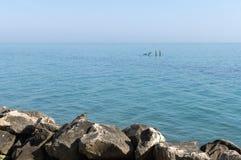 Två poler i havet Royaltyfri Bild