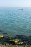 Två poler i havet Fotografering för Bildbyråer