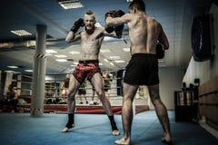 Två professionellkämpar som utbildar samman med att stansa block på idrottshallen Royaltyfria Foton