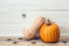 Två pumpor med den dekorativa spindeln på en bakgrund av den vita boaen arkivbild