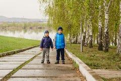 Två pyser som står i parkera efter regnet royaltyfria foton