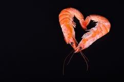 Två räkor som bildar en hjärta i en svart bakgrund Fotografering för Bildbyråer