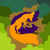 Två rävar som spelar i skog Arkivbilder