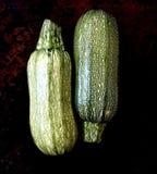 Två rå grön zucchini, bästa sikt, mörk bakgrund arkivfoto