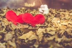Två röd hjärta, valentindagvykort, älskar dig, mig älskar dig Fotografering för Bildbyråer