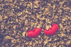 Två röd hjärta, valentindagvykort, älskar dig, mig älskar dig Arkivfoto