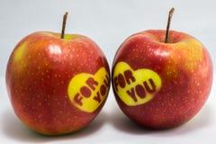 Två röda äpplen för valentin Royaltyfri Fotografi