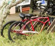 Två röda cyklar som parkeras i det högväxta gräset på ett strandhus Royaltyfria Bilder