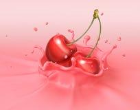 Två röda körsbär som faller in i att plaska för milkshake Royaltyfria Bilder