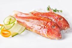 Två röda multefiskar och grönsaker royaltyfri fotografi