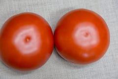 Två röda nötkötttomater Arkivbild